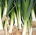Picture for category Leeks