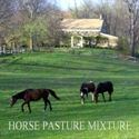 Picture of Horse Pasture Mixture