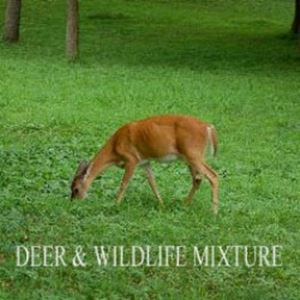 Picture of Great Lakes Deer and Wildlife Pasture Mixture