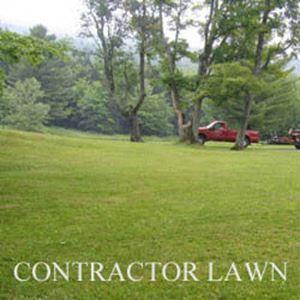 Picture of Contractor's Lawn Mixture