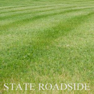 Picture of State Roadside Lawn Mixture
