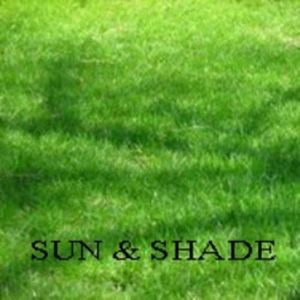 Picture of Sun & Shade Lawn Mixture