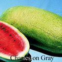 Picture of Watermelon, Charleston Gray