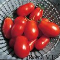 Picture of Tomato, Roma V.F.