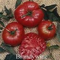 Picture of Tomato, Brandywine