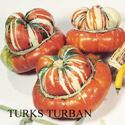 Picture of Gourds, Turks Turban