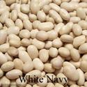 Picture of Shell Bean, White Navy