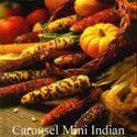 Picture of Decorative Corn, Carousel, Mini-Indian