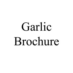 Picture of Garlic Brochure