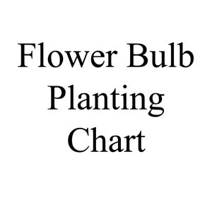 Picture of Flower Bulb Planting Chart