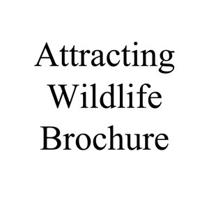 Picture of Attracting Wildlife Brochure