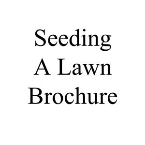 Picture of Seeding a Lawn Brochure