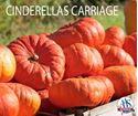 Picture of Pumpkin, Cinderella's Carriage
