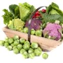 Picture for category Brassicas