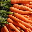 Picture of Carrot, Little Finger