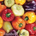 Picture of Pepper, Rainbow Bell Sweet