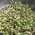 Picture of Cowpeas, Pink Eye Purple Hull