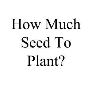Picture of How Much Seed to Plant