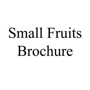 Picture of Small Fruit Brochure