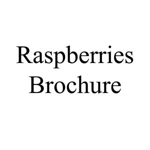 Picture of Raspberry Brochure