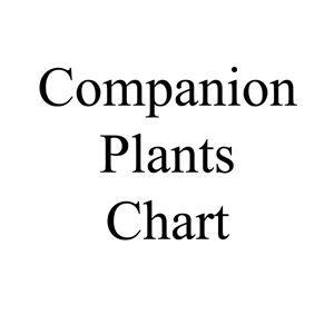 Picture of Companion Plants Chart
